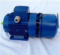 中研BMA7112紫光刹车电机