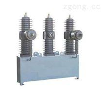 35KV真空断路器ZW32-40.5