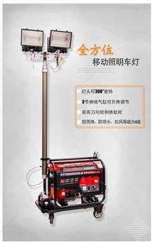 带LED灯照明6KW汽油发电机YT6-4DT