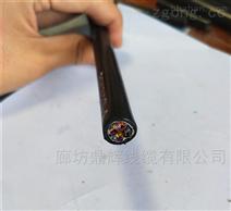 HYV53 50*2*0.5 地埋通信電纜