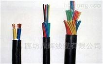 廊坊 HYA大對數通信電纜廠家價格
