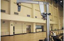 小型起重机气动悬臂吊