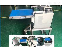 魷魚切圈機-魷魚加工設備定制