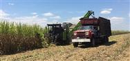 中联重科农业机械走进墨西哥 本地化运营迅速突破市场